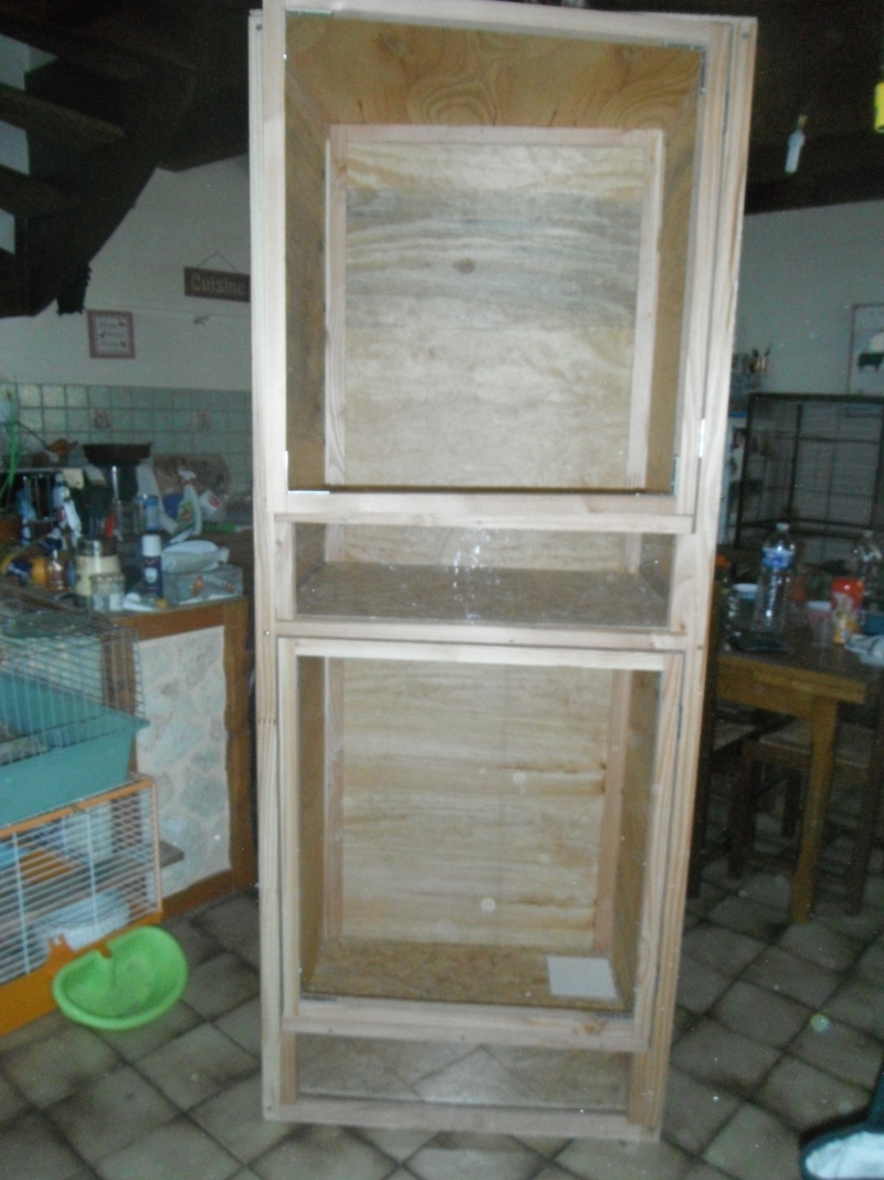 nouvelle cage Dscf9410