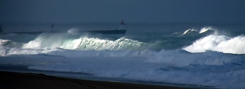 retour des vagues sur le forum P1030210