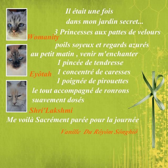 Chat'rivari....en pays d'Oc - Page 14 Vaux-l10
