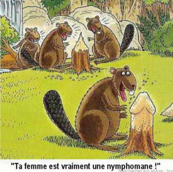 humour en image Humour30
