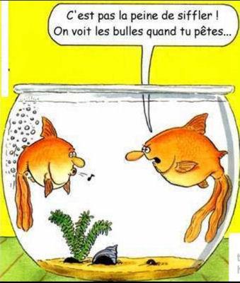 humour en image Humour51