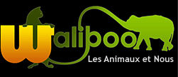 annuaires chiens 2 Walibo10