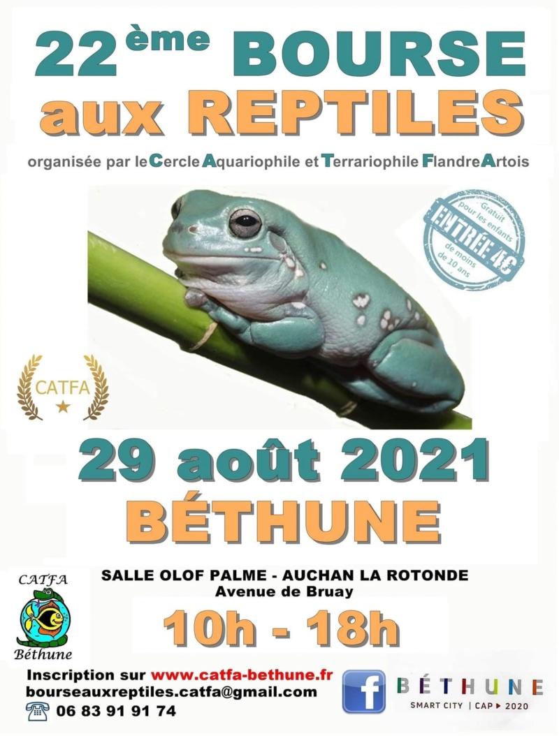 Bourse aux reptiles Bethune 2021 A0135e10