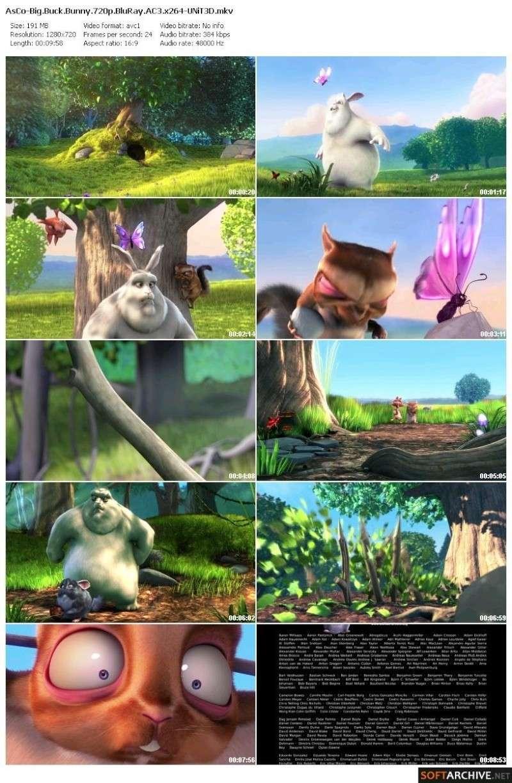 Big Buck Bunny (2008)  720p Blueray AC3x264 45287210