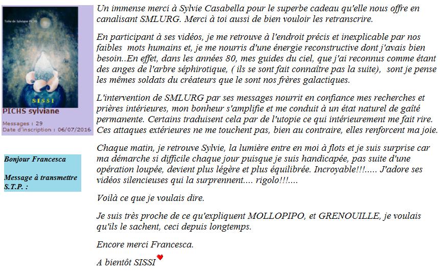 Canalisations énergétiques de SMLURG par Sylvie Casabella Messag10
