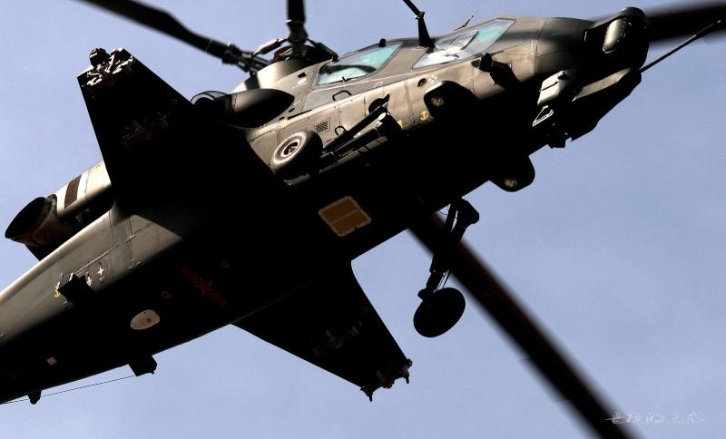 Hélicoptères de combats - Page 4 Z10-2713