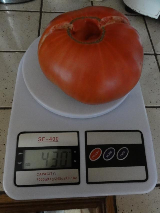Quelques  tomates    du  jardin  ! Dsc07614