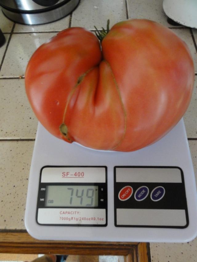 Quelques  tomates    du  jardin  ! Dsc07615