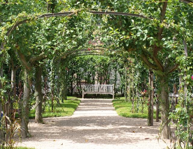 Jardin Albert Khan P8101413