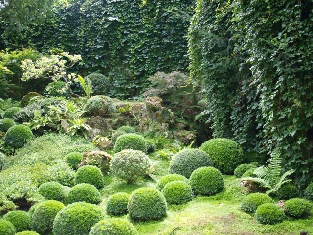 Jardin Albert Khan P8101422