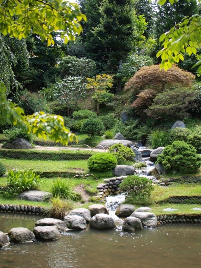 Jardin Albert Khan P8101428