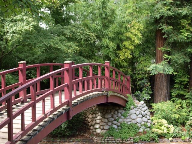 Jardin Albert Khan P8101429