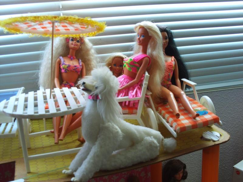 Ma famille Barbie File0131