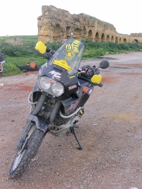 Sei un Alfa-biker ???  Presentati qui !!! Max45116