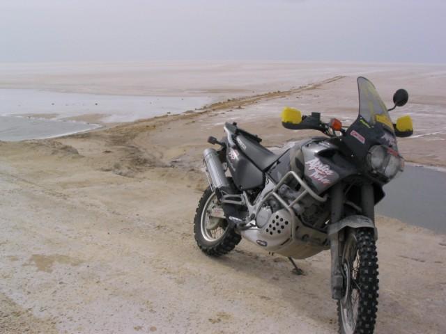 Sei un Alfa-biker ???  Presentati qui !!! Max45120