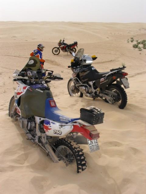 Sei un Alfa-biker ???  Presentati qui !!! Max45133