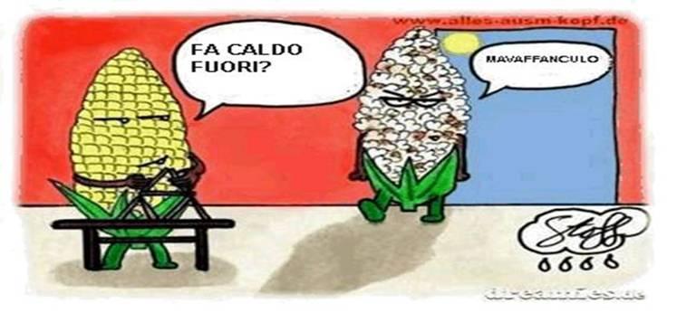 Cazzeggio!!! - Pagina 23 Att00011