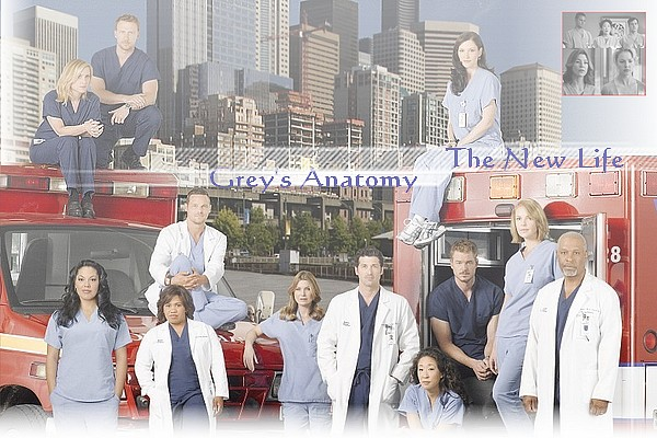 Grey 's Anatomy The New Life toujours partenaires? Hgkjlh10