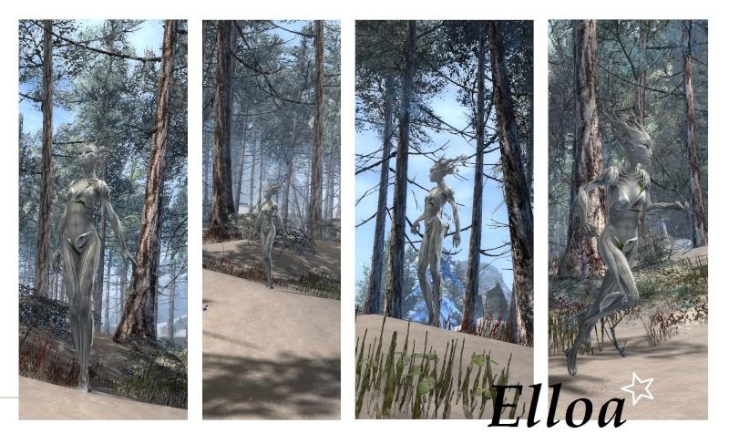 GW2 Screenshots - Page 2 Elloag10