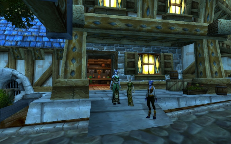Whitestar Snapshots book (WOW RP screenshots) Wowscr42