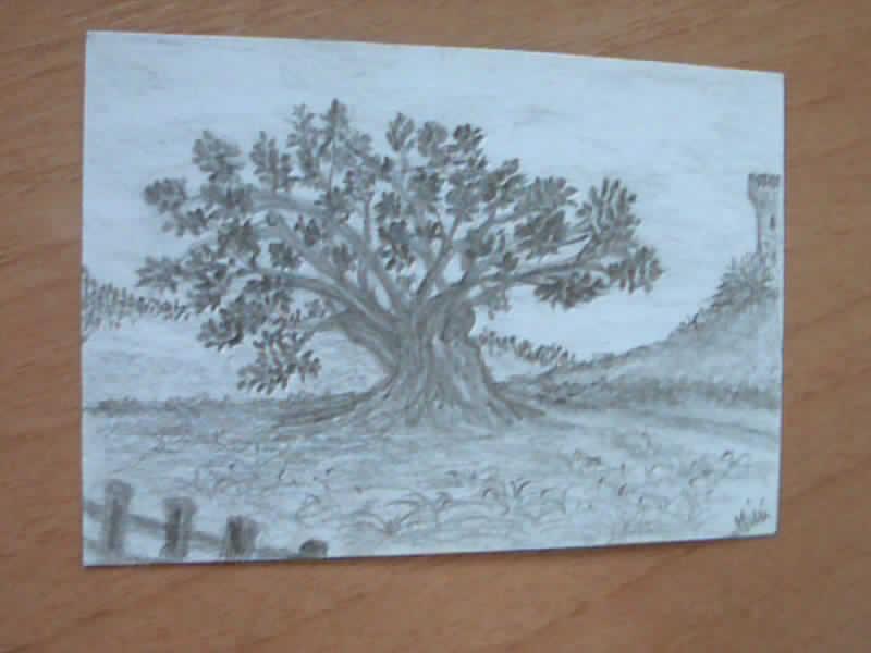 I miei disegni piccini picciò Albero10