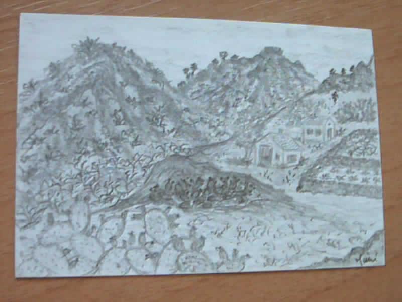 I miei disegni piccini picciò Canari10