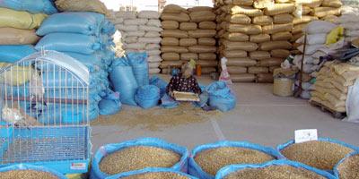 Les droits de douane sur l'importation du blé seront suspendus entre le 1er octobre et fin décembre Bla-ma10