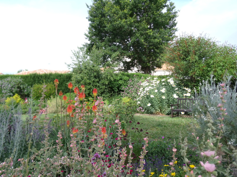 Anselme - Le jardin d'Anselme (44) - Page 4 Jardin10