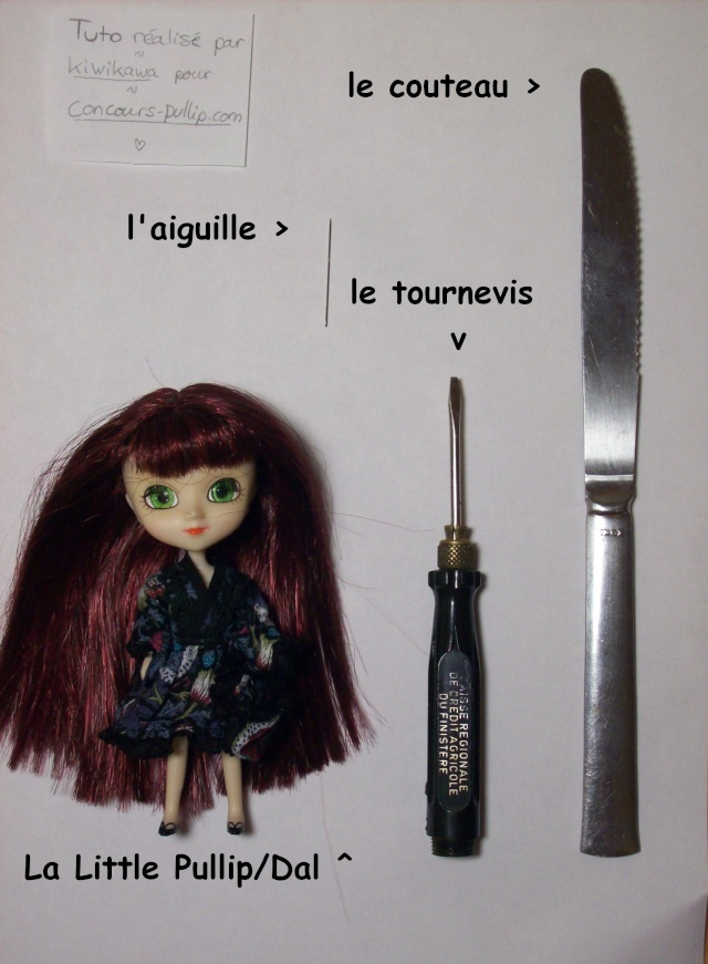 [Tutoriel] Little Pullip 1tuto10