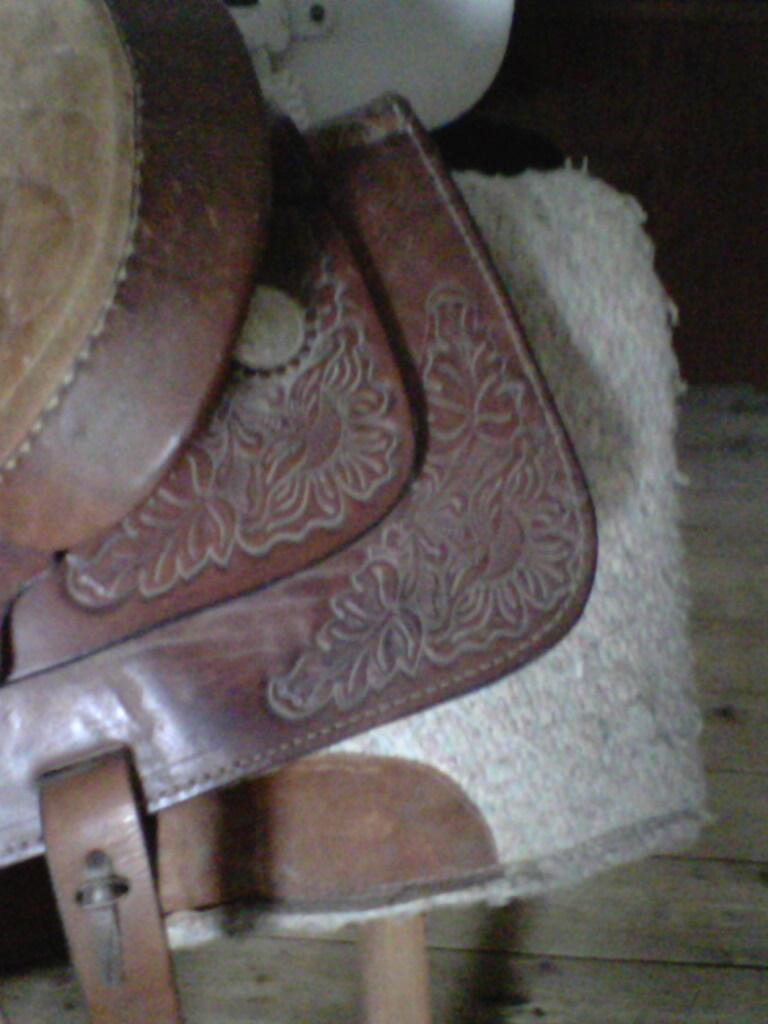 selle western Img00012