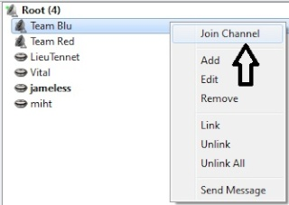 How to Join a Passworded Channel on Mumble Joinch10