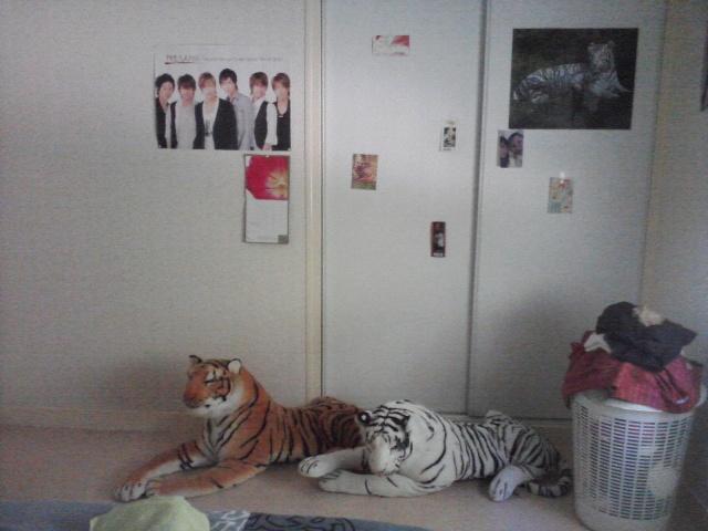 Votre chambre à vous ! P11-0718