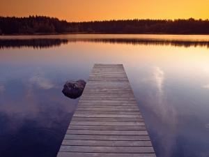 la patience... une puissance spirituelle! 36245-11