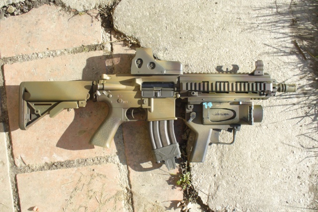=HK 416 D10 RS VFC= P1110410