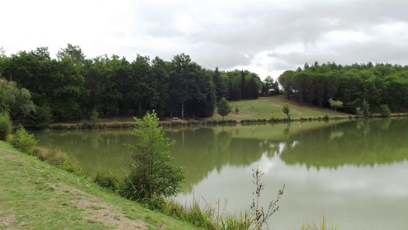 Le lac - Page 10 Dscf5510