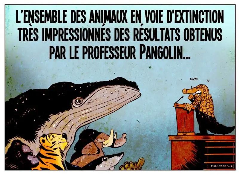 Humour du Jour..toujours :) - Page 7 Screen10