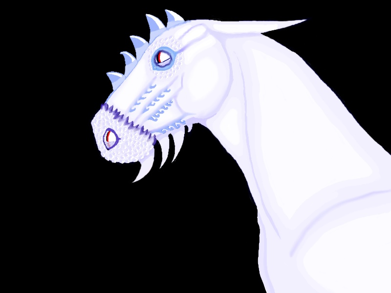 Dragon Cheval O_O Dragoo11