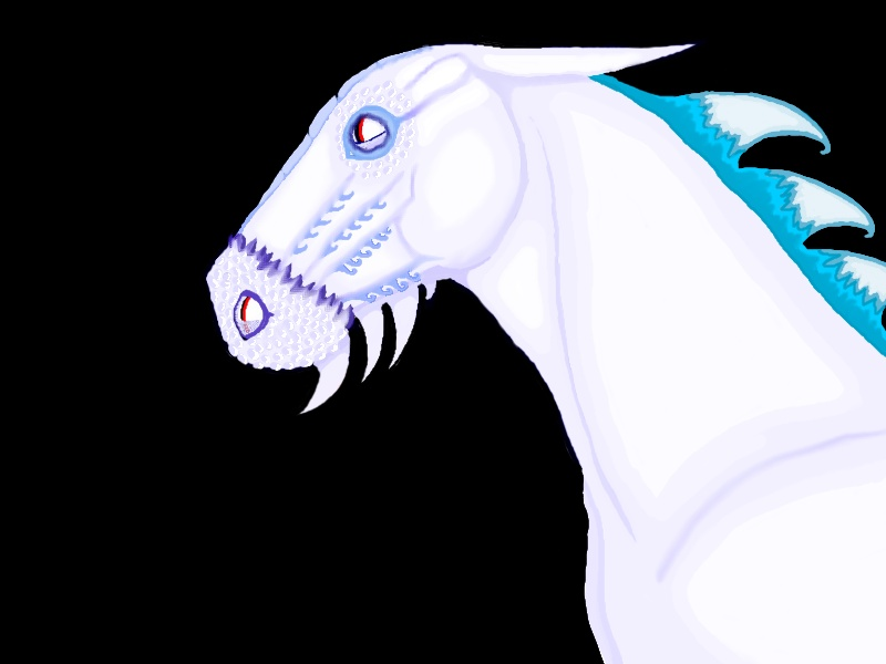 Dragon Cheval O_O Dragoo12