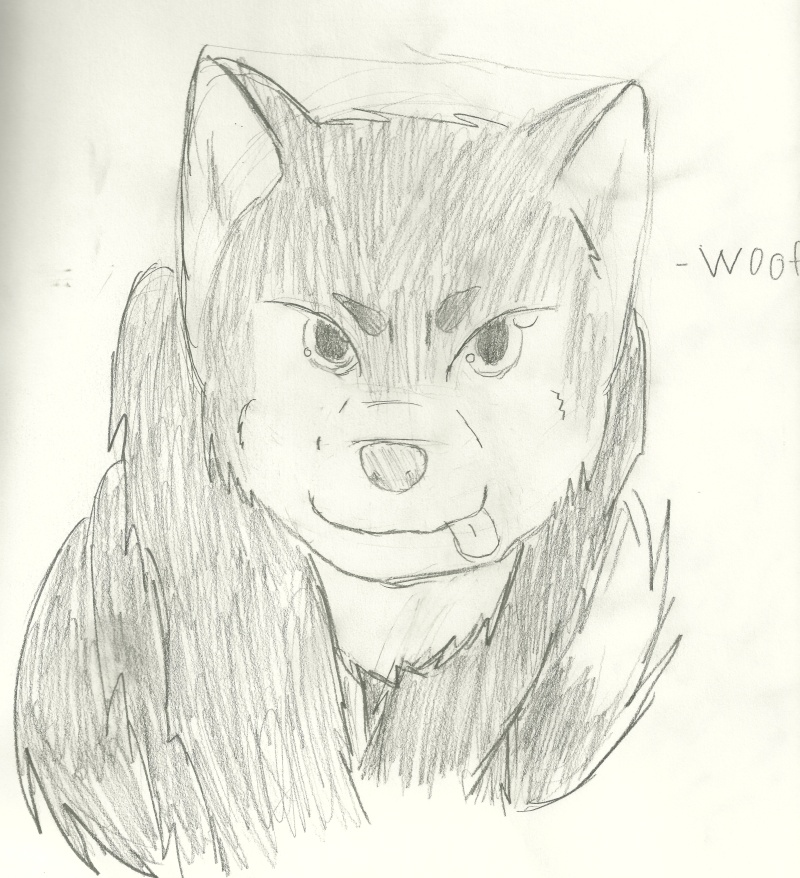 BeDaOrLiSeAr's Attempts: Drawings And Pictures - Page 6 Woof10