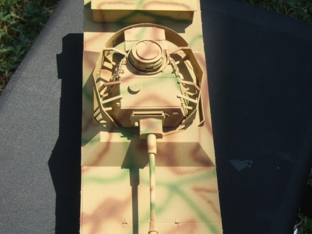 Panzerjagerwagen Dscf2712