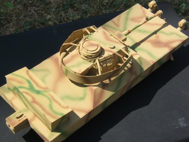 Panzerjagerwagen Dscf2713