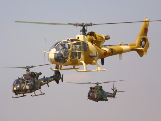 Armées marocaines 52132510