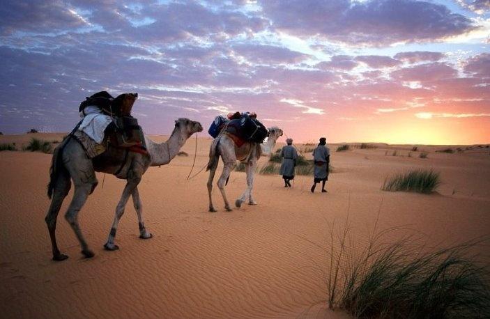 Tradition et beauté Algérienne Untitl15