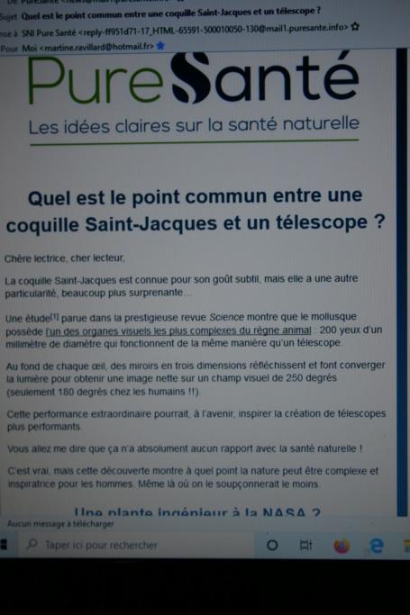 Coquille St Jacques et télescope Img_7910