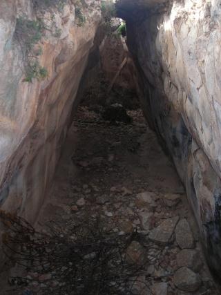 Le plateau de grecques de Narbo - Page 4 Dscn0712