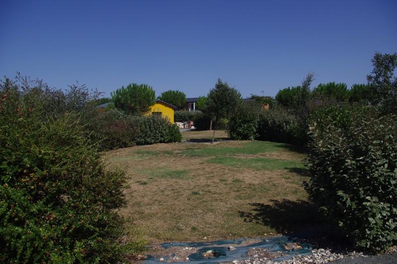 Camping Parc de Bellevue ( Charente Maritime)  - Page 2 Imgp7818