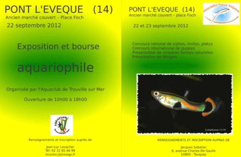 Exposition , bourse de Pont l'êvèque 22/23/09/2012 Captur16