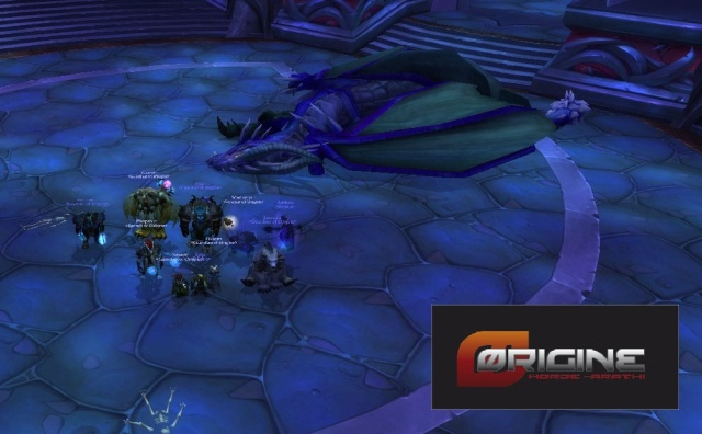 Theralion et Valiona sont enfin a terre ! Wowscr12