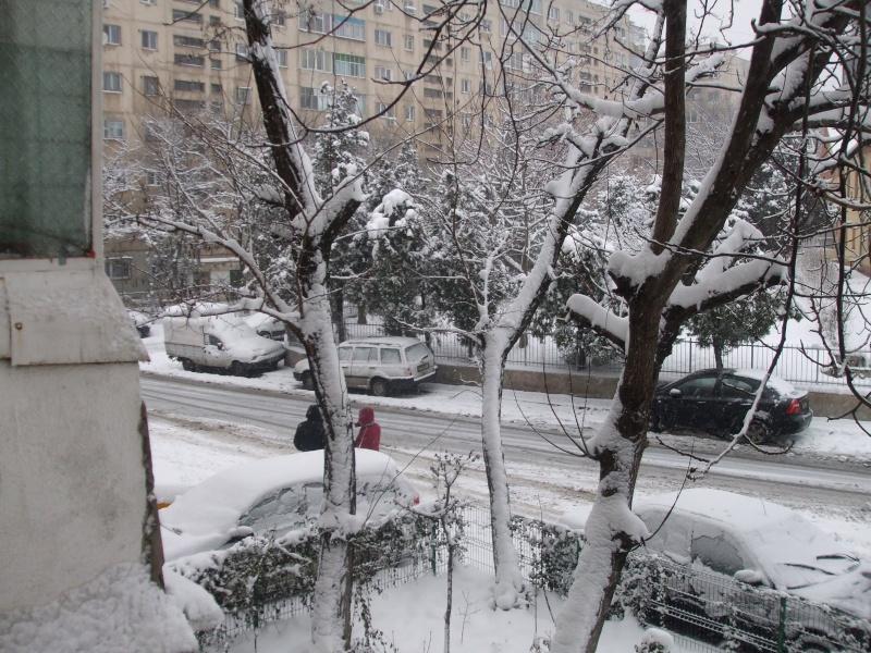 la météo dans la Roumanie Dscf0111