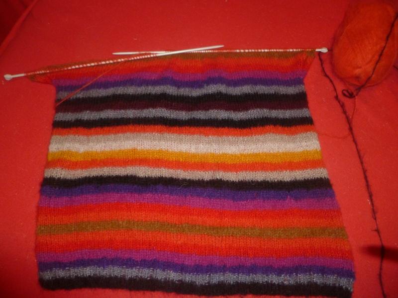 Pull multicolore P1030823